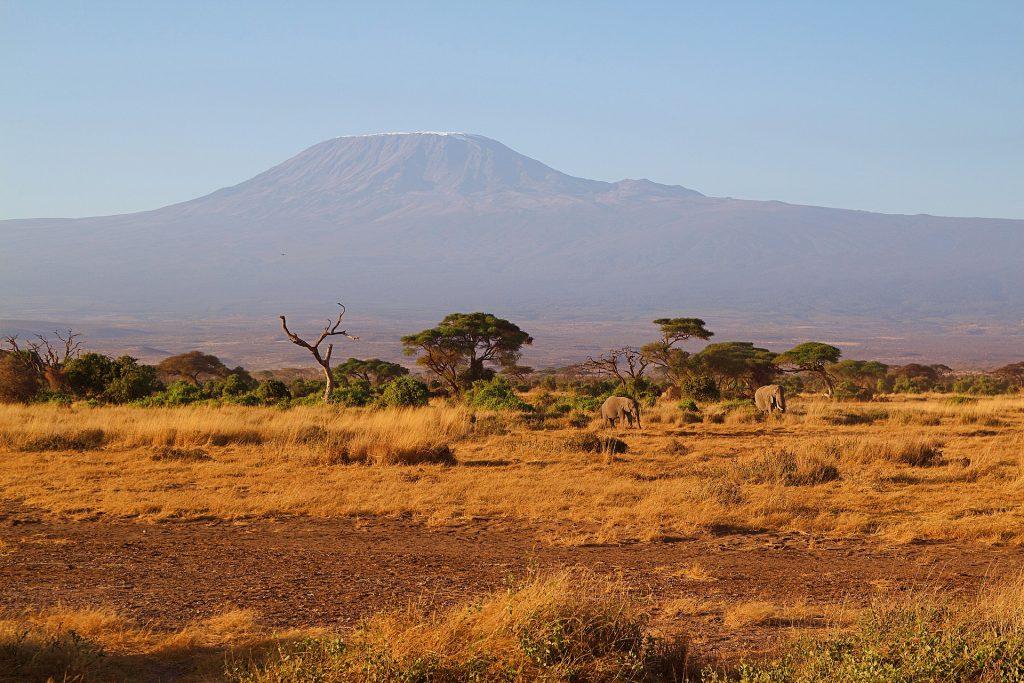 Kilimanjaro - höchster Berg Afrikas