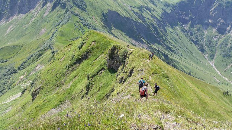 Alpen allgaeu aelpelesattel