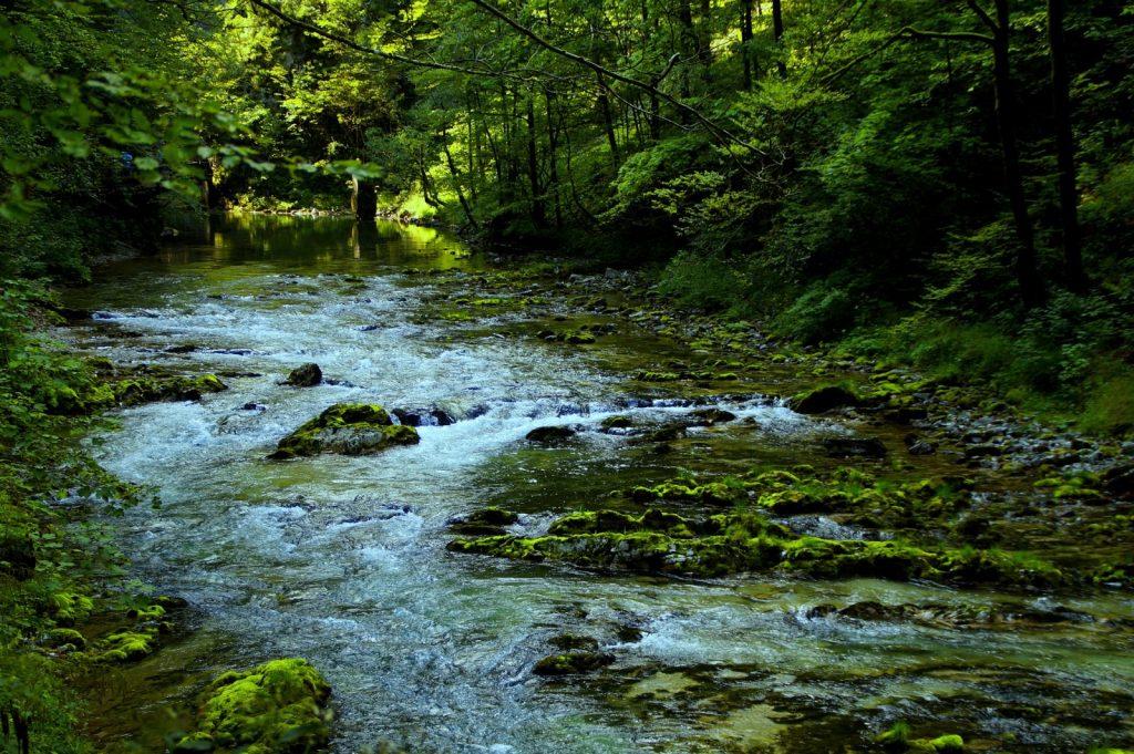 Slowenien wandern Vintgar Schlucht