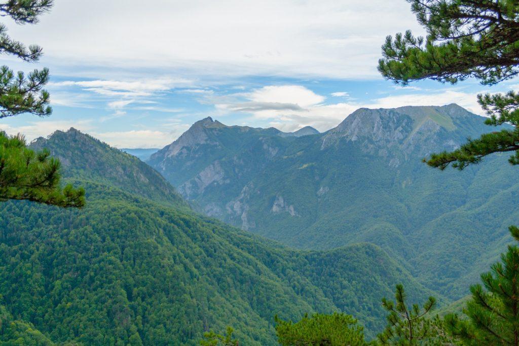 Sutjeska Nationalpark Perucica