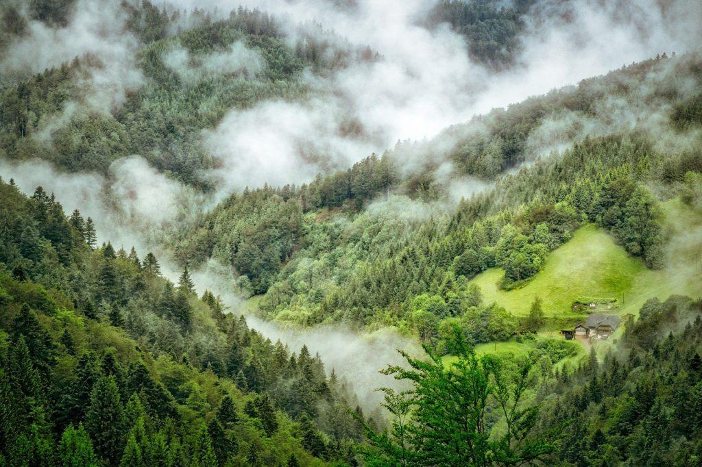 Schwarzwald wandern in Deutschland